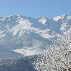Отель Aspet Армения, Татев - отзывы, цены и фото номеров - забронировать отель Aspet онлайн фото 6
