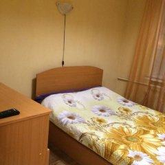 Мини-отель Ариэль Стандартный номер с различными типами кроватей фото 3
