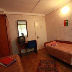 Смена Адлеркурорт Отель 2* Номер Эконом с разными типами кроватей