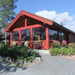 Отель Bø Camping og Hytter гостиничный бар