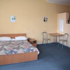 Гостиница Регина - Баумана 3* Улучшенный номер с различными типами кроватей фото 3