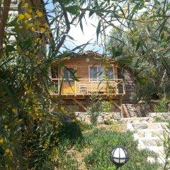 Отель Olive Garden Kabak 2* Бунгало фото 3