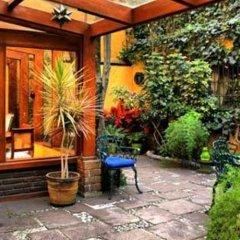 Отель La Casita del Patio Verde Мексика, Мехико - отзывы, цены и фото номеров - забронировать отель La Casita del Patio Verde онлайн фото 5