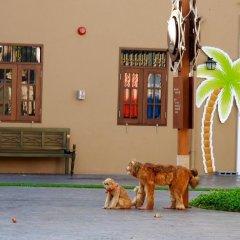 Отель Villamango Самуи фото 20