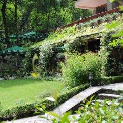 Отель Restaurant Dreri Албания, Тирана - отзывы, цены и фото номеров - забронировать отель Restaurant Dreri онлайн фото 24