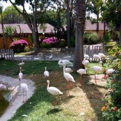 Hotel ILUNION Fuengirola фото 2