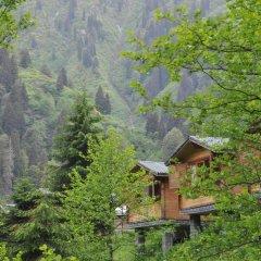Kardelen Bungalov Evleri̇ Турция, Чамлыхемшин - отзывы, цены и фото номеров - забронировать отель Kardelen Bungalov Evleri̇ онлайн фото 2