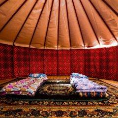 Отель Хостел Duet Кыргызстан, Каракол - отзывы, цены и фото номеров - забронировать отель Хостел Duet онлайн комната для гостей фото 3
