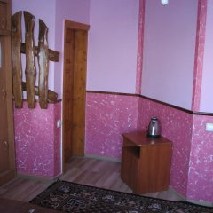 Гостиница U Tetyany в номере фото 2