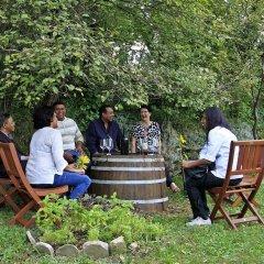 Отель Farm stay Domačija Butul фото 7