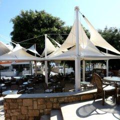Dionysos Central Hotel гостиничный бар
