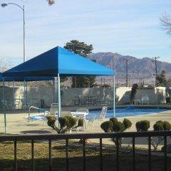 Отель Las Vegas Camping Resort Cabin 3 США, Лас-Вегас - отзывы, цены и фото номеров - забронировать отель Las Vegas Camping Resort Cabin 3 онлайн спортивное сооружение