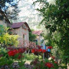 Отель Sultan Camp Патара фото 7