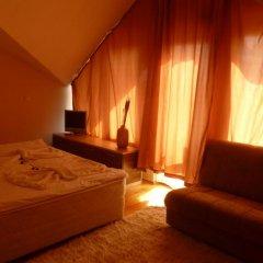 Отель Eagles Nest Aparthotel Болгария, Банско - отзывы, цены и фото номеров - забронировать отель Eagles Nest Aparthotel онлайн комната для гостей фото 3