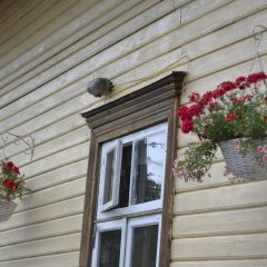 Отель Marta Guesthouse Tallinn 2* Стандартный номер с двуспальной кроватью (общая ванная комната) фото 7