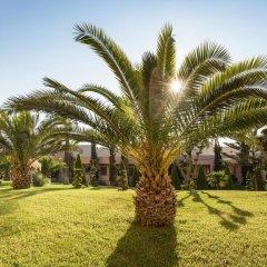 Отель Horizon Beach Resort Греция, Калимнос - отзывы, цены и фото номеров - забронировать отель Horizon Beach Resort онлайн фото 11