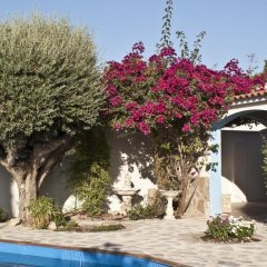 Отель Casa Hermosa Испания, Ориуэла - отзывы, цены и фото номеров - забронировать отель Casa Hermosa онлайн бассейн фото 3