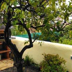 Отель Lemon House with Private Garden детские мероприятия