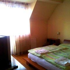 Отель Villa Max Венгрия, Силвашварад - отзывы, цены и фото номеров - забронировать отель Villa Max онлайн комната для гостей фото 3