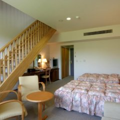 Отель Japanese Auberge Plaza Ryokufu Natural Hot Spring комната для гостей фото 4