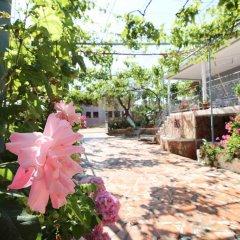 Отель Zace Studios Албания, Ксамил - отзывы, цены и фото номеров - забронировать отель Zace Studios онлайн фото 3