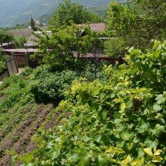 Отель Aspet Армения, Татев - отзывы, цены и фото номеров - забронировать отель Aspet онлайн фото 9