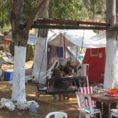 Azmakbasi Camping Турция, Атакой - отзывы, цены и фото номеров - забронировать отель Azmakbasi Camping онлайн фото 5