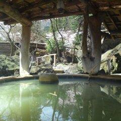 Arden Hotel Aso Минамиогуни бассейн фото 3