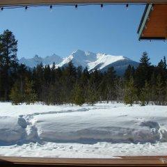 Отель Mica Mountain Lodge & Log Cabins фото 9