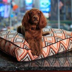 Renaissance New York Times Square Hotel с домашними животными