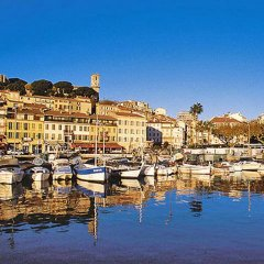 Отель Le Mistral Франция, Канны - отзывы, цены и фото номеров - забронировать отель Le Mistral онлайн приотельная территория