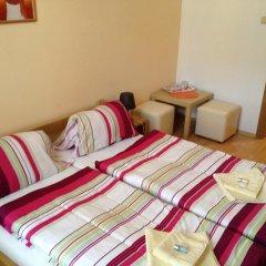 Отель Penzion U Vlcku 3* Стандартный номер фото 8