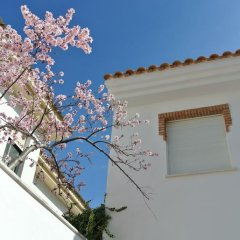 Отель Casa San Tomas Испания, Гуэхар-Сьерра - отзывы, цены и фото номеров - забронировать отель Casa San Tomas онлайн фото 13