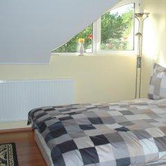 Отель Aranyalma Panzio&Etterem Heviz Стандартный номер с разными типами кроватей фото 2