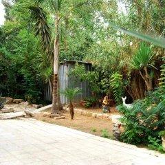 German Colony Garden Израиль, Иерусалим - отзывы, цены и фото номеров - забронировать отель German Colony Garden онлайн фото 3