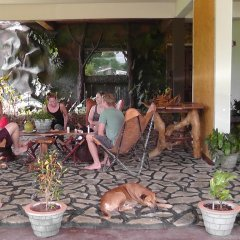 Отель Manikgoda Tea Paradise