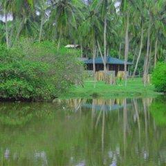 Отель Aqua Front Yala Resort 3* Стандартный номер с различными типами кроватей фото 5