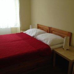 Отель Pension Platan 3* Апартаменты с различными типами кроватей фото 3