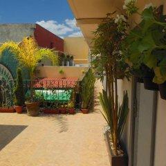 Отель Hostal Centro Historico Oasis Мехико фото 5