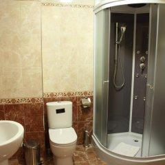Мини-отель Ностальжи Стандартный номер фото 4