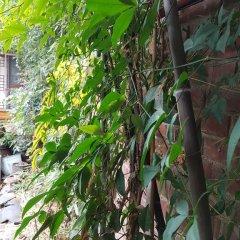 Отель Gong Sim Ga 2* Стандартный семейный номер с двуспальной кроватью фото 6