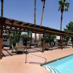Отель Americas Best Value Inn Downtown Las Vegas США, Лас-Вегас - отзывы, цены и фото номеров - забронировать отель Americas Best Value Inn Downtown Las Vegas онлайн бассейн фото 3