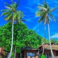 Отель Koh Tao Beach Club 3* Номер Делюкс с различными типами кроватей фото 17