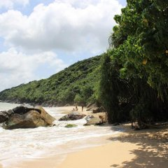 Nature Trails Boutique Hotel пляж
