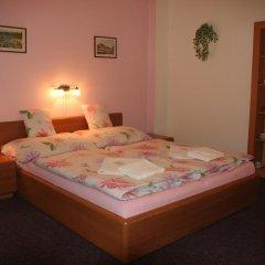 Отель Chebsky dvur - Egerlander Hof 3* Стандартный номер с различными типами кроватей фото 4