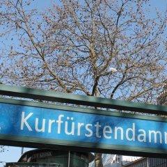 Отель Esfand Hostel Германия, Берлин - отзывы, цены и фото номеров - забронировать отель Esfand Hostel онлайн приотельная территория