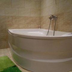 Гостиница Deluxe na Gagarina в Калининграде отзывы, цены и фото номеров - забронировать гостиницу Deluxe na Gagarina онлайн Калининград ванная