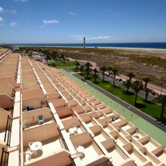 Отель Apartamentos Palm Garden