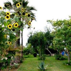 Отель Tropikal Resort Дуррес фото 5