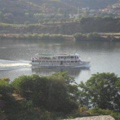 Отель Quinta Da Azenha Армамар приотельная территория фото 2